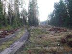 Осення покатушка около Семиозерье 2014г (28)