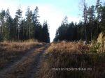 Осення покатушка около Семиозерье 2014г (34)