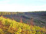 Осення покатушка около Семиозерье 2014г (68)