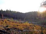 Осення покатушка около Семиозерье 2014г (69)